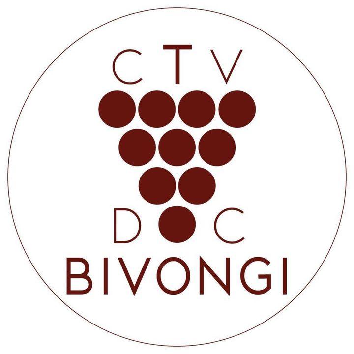 Consorzio di tutela e valorizzazione delle viti e del vino doc Bivongi