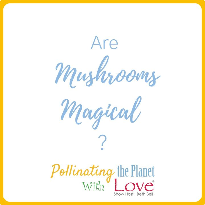 Are Mushrooms Magical?  Guest Louie Schwartzberg