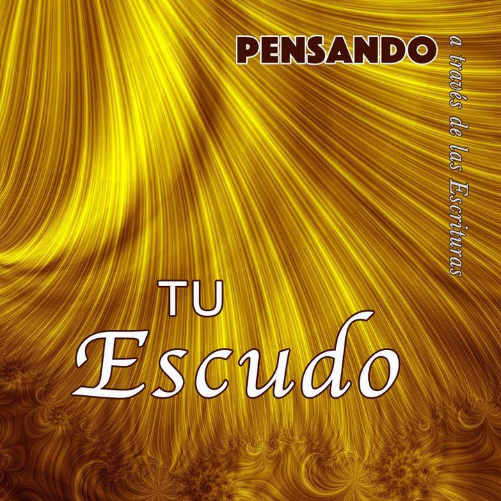 Tu escudo (PAE N.4)