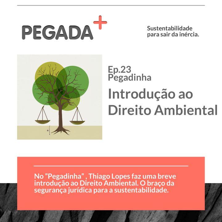 Ep. 23 - Pegadinha - Direito Ambiental