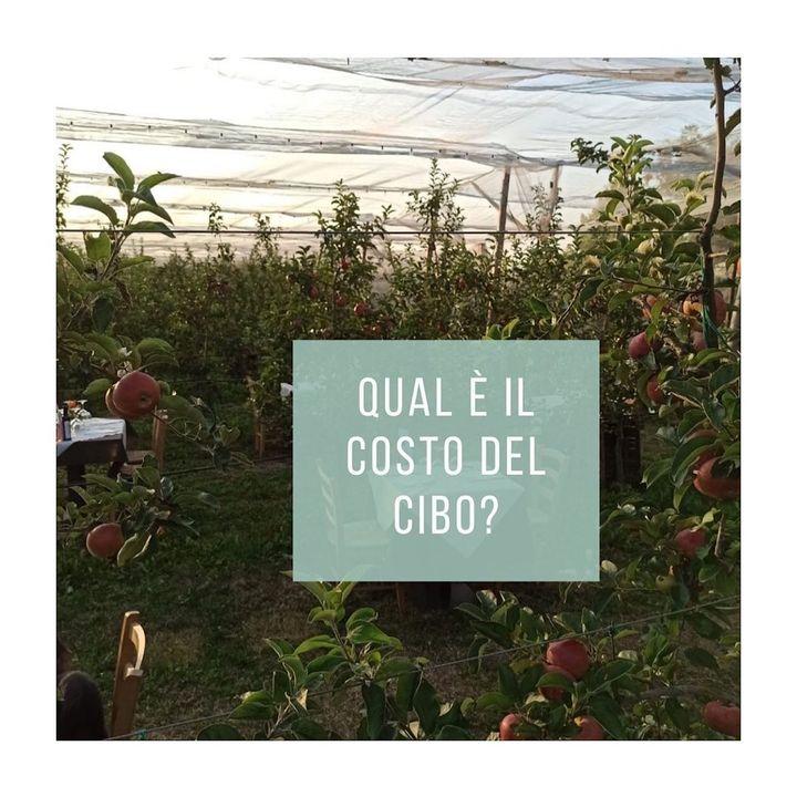 Fa Bene al Clima - Ambiente e alimentazione - intervista a Chiara Ferrari