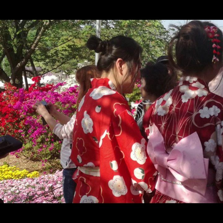 Ashikaga wisteria flower park_ I glicini giapponesi al tempo del lockdown