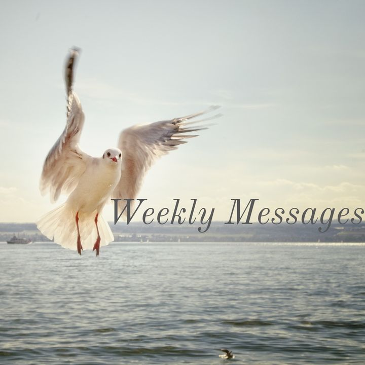 YOU ARE CURRENTLY EXPERIENCING YOUR TESTIMONY! WEEKLY MESSAGES