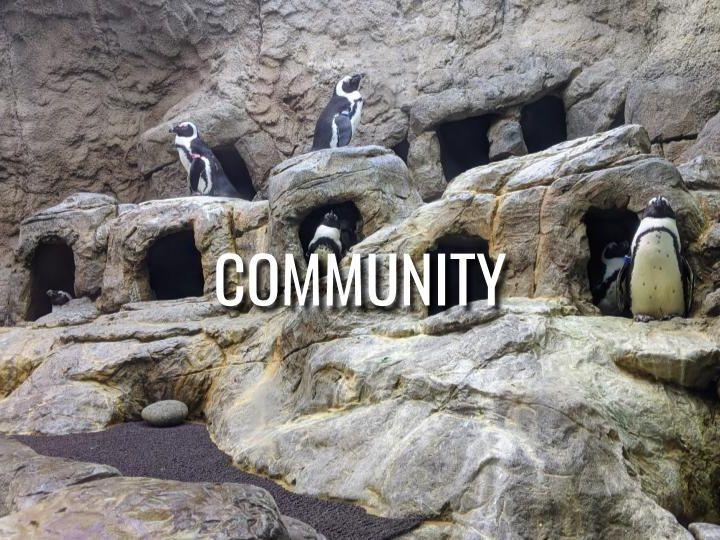 Community - Morning Manna #3213