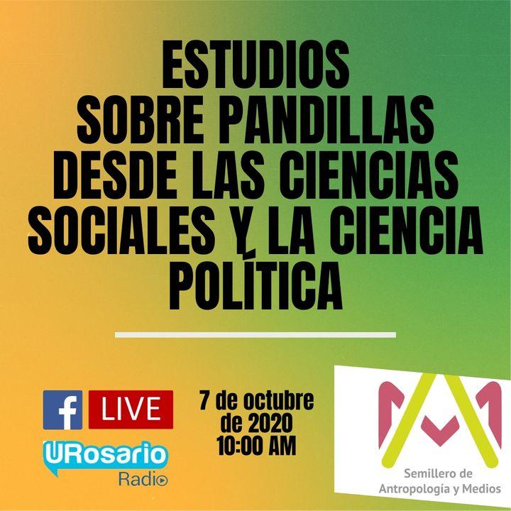 Estudios sobre pandillas desde las ciencias sociales y la ciencia política