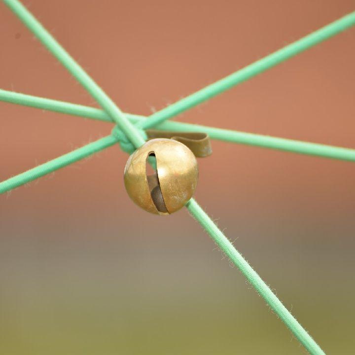L'elastico