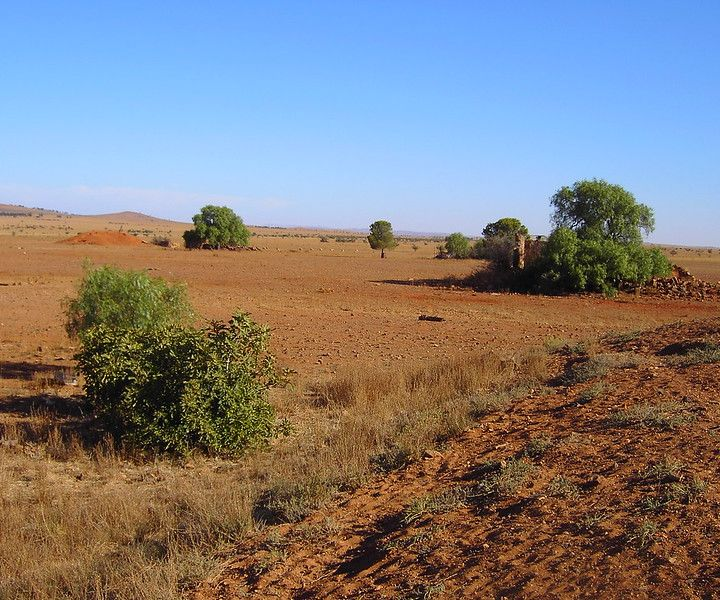 Scarti per rigenerare il suolo l'Australia sceglie la via circolare