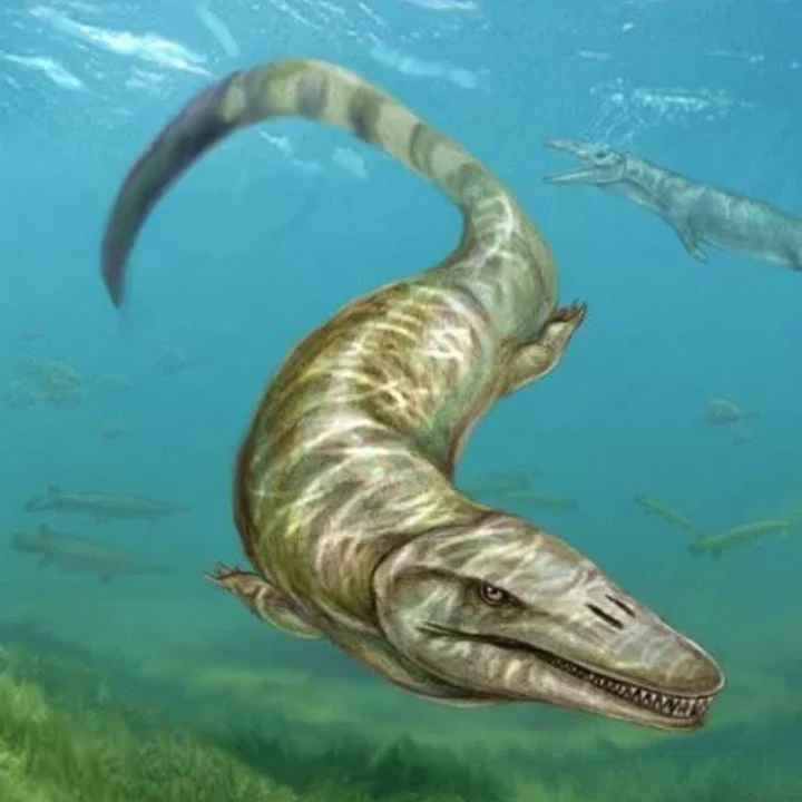 #rast Il mostro del Lago di Garda
