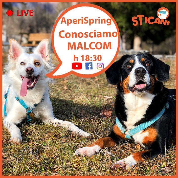 #05 Conosciamo MALCOM | AperiSpring LIVE
