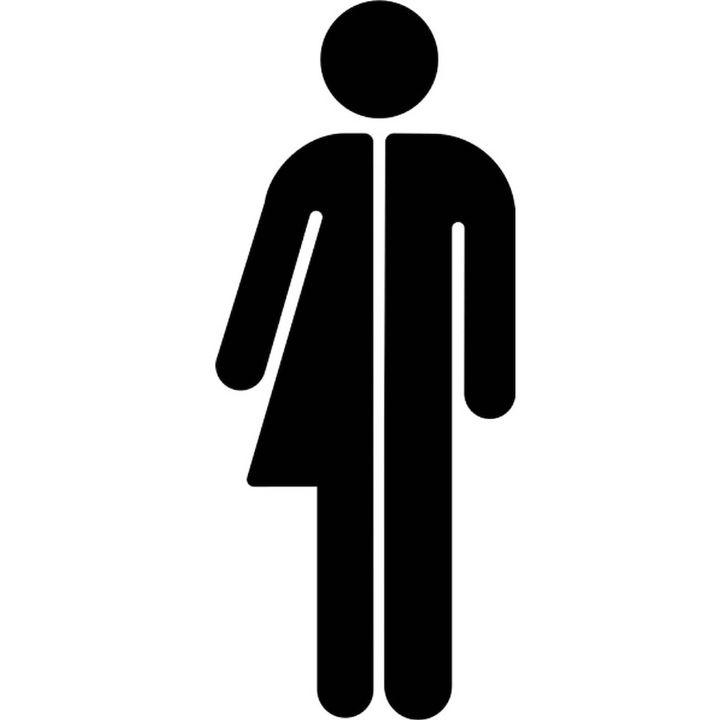 Är könet kropp eller identitet?