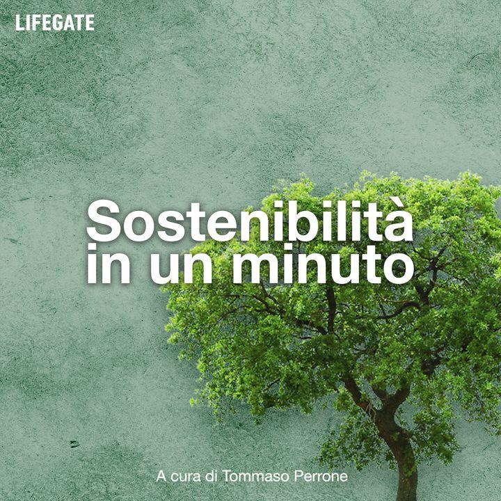Sostenibilità in 1 minuto