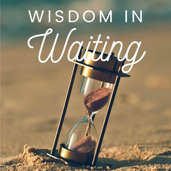 Wisdom in Waiting Guide