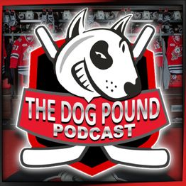 The Dog Pound Podcast - Niagara Ice Dogs Week 2 review(OSH, FLNT & SAG) Week 3 (SAG & KGN), Ice Dogs NHL Update