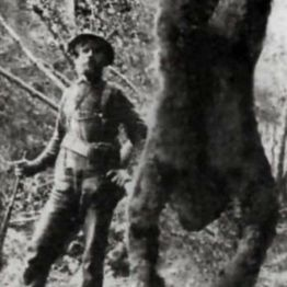 """LEGENDS AND LIES OF SASQUATCH: IS BIGFOOT REAL?"" and 15 More Freaky True Stories! #WeirdDarkness"