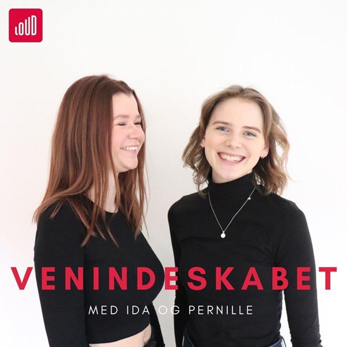 Venindeskabet - immagine di copertina