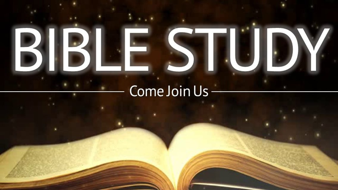 IMMERSION IN THE WORD- BIBLE STUDY - Cover Image