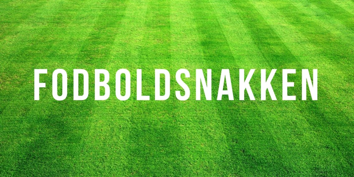 Fodboldsnakken - imagen de portada
