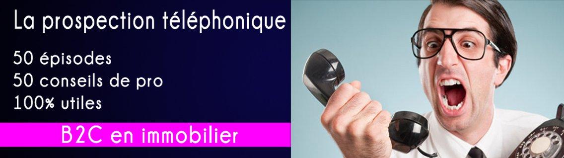 📲 La prospection téléphonique 50 conseils - imagen de portada
