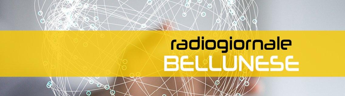 Radiogiornale bellunese - imagen de portada