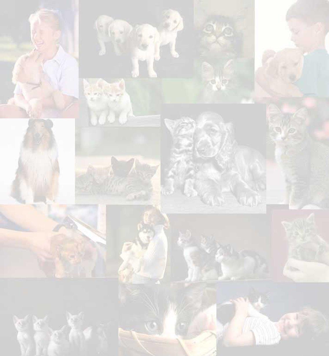 The Animal Radio® Show - imagen de portada