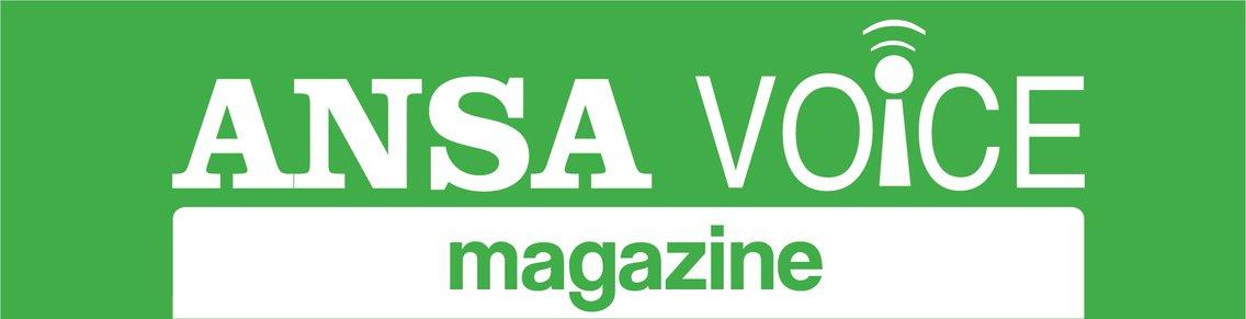ANSA Voice magazine - immagine di copertina