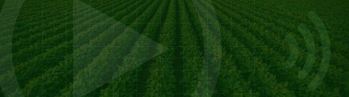 Portal Agrolink o maior produtor de conteúdo Agro - immagine di copertina