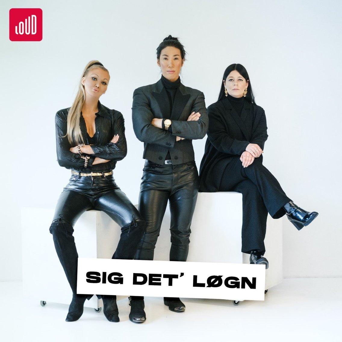 Sig Det' Løgn - immagine di copertina