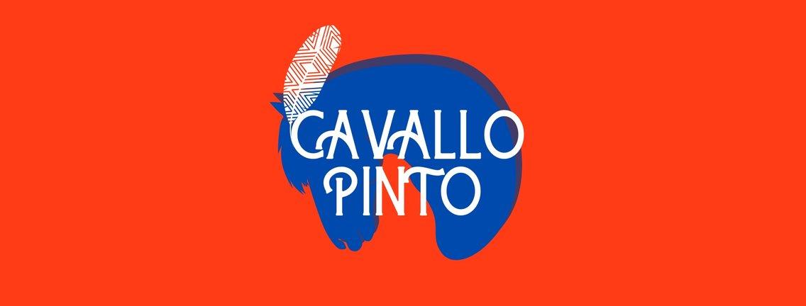 Cavallo Pinto - immagine di copertina