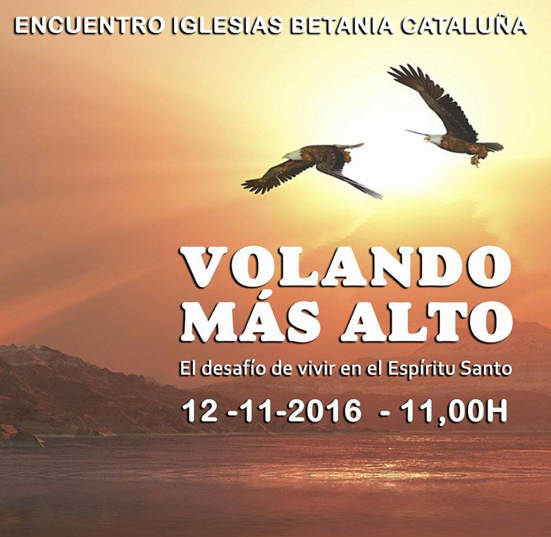 VOLANDO MÁS ALTO - imagen de portada