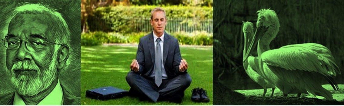 12. Guided Meditation & Stress Mgmt - immagine di copertina