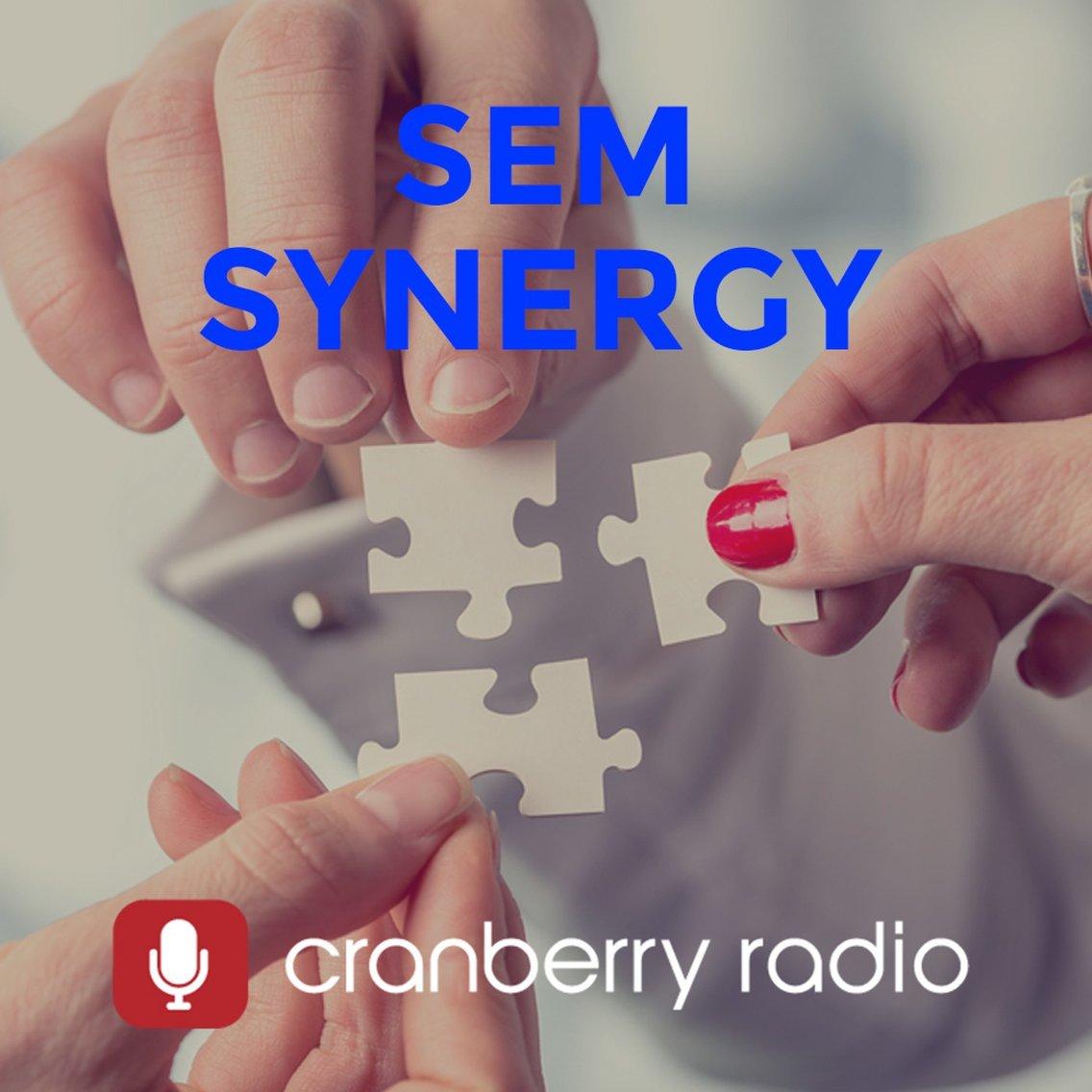 SEM Synergy - imagen de portada