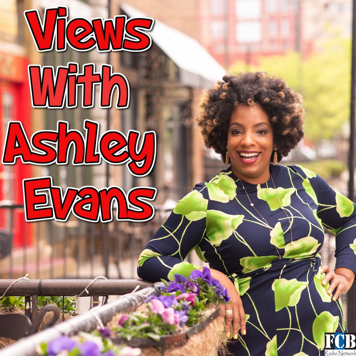 Views with Ashley Evans - Cover Image