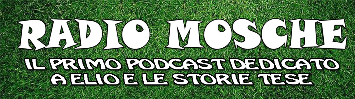 Radio Mosche - Podcast EELST - Cover Image