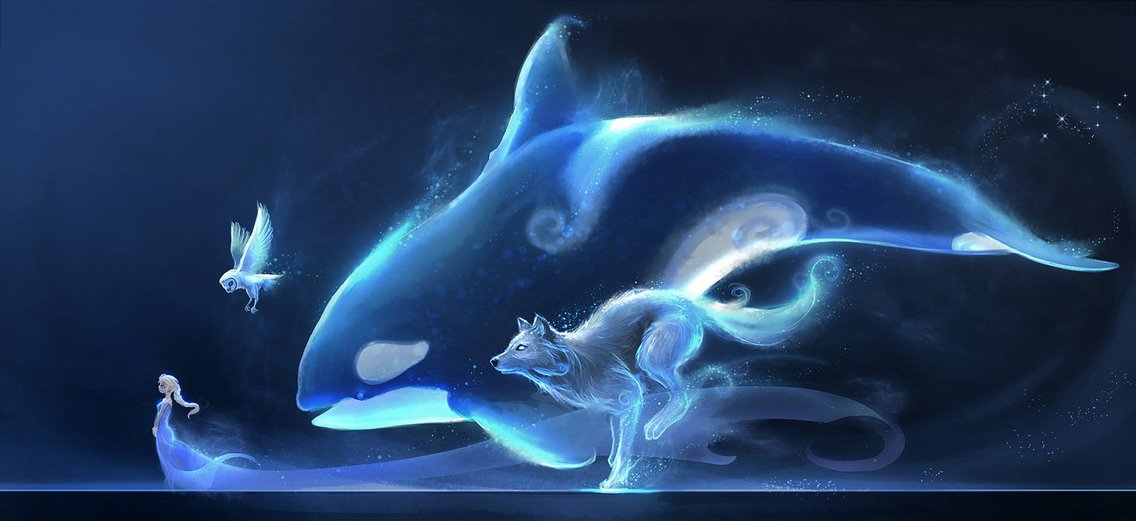 Poteri Medicina - Animali Totem - imagen de portada