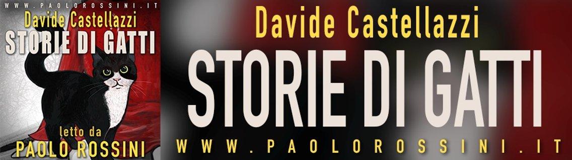 Storie di Gatti - immagine di copertina