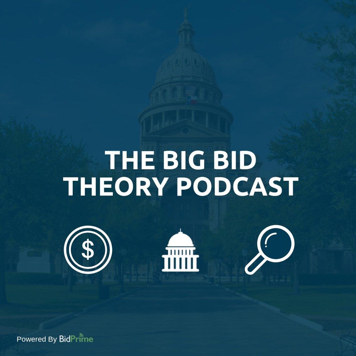 The Big Bid Theory - immagine di copertina
