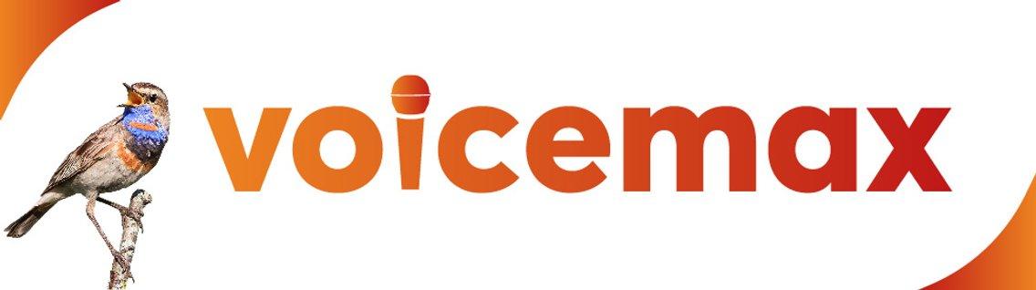 VoiceMax - immagine di copertina