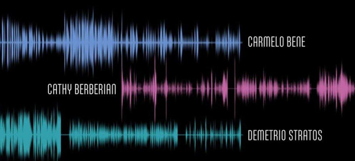 Il corpo della voce - Cover Image