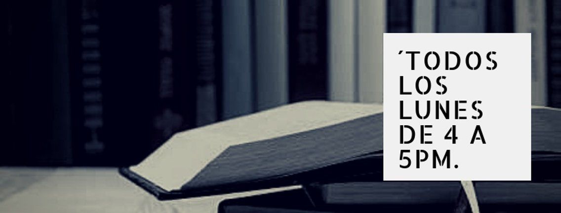 El buen librero - immagine di copertina