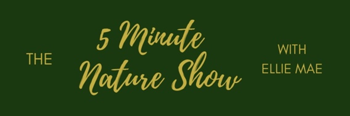 5 Minute Nature Show - Cover Image