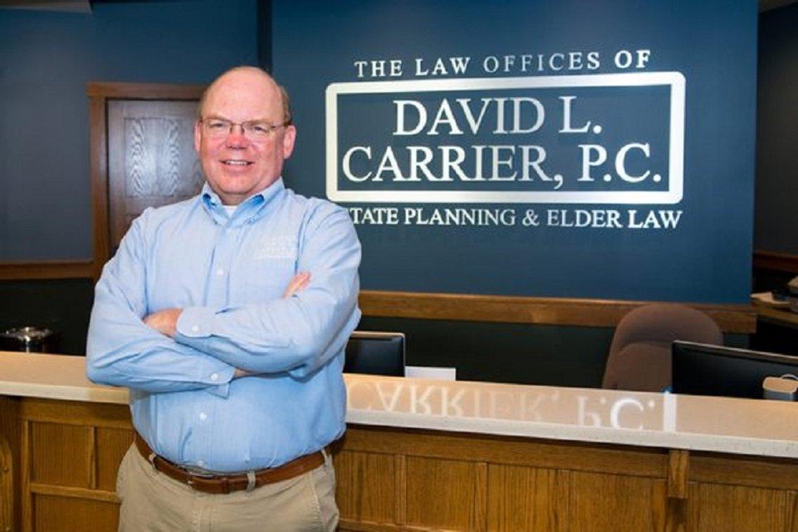 The David Carrier Show - immagine di copertina