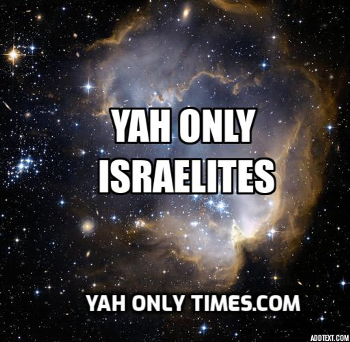 Israelite Report Podcast - Cover Image