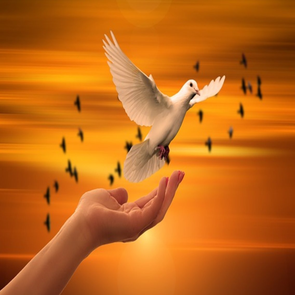 Powerful Deliverance Prayers - immagine di copertina