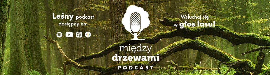 Między Drzewami Podcast - imagen de portada