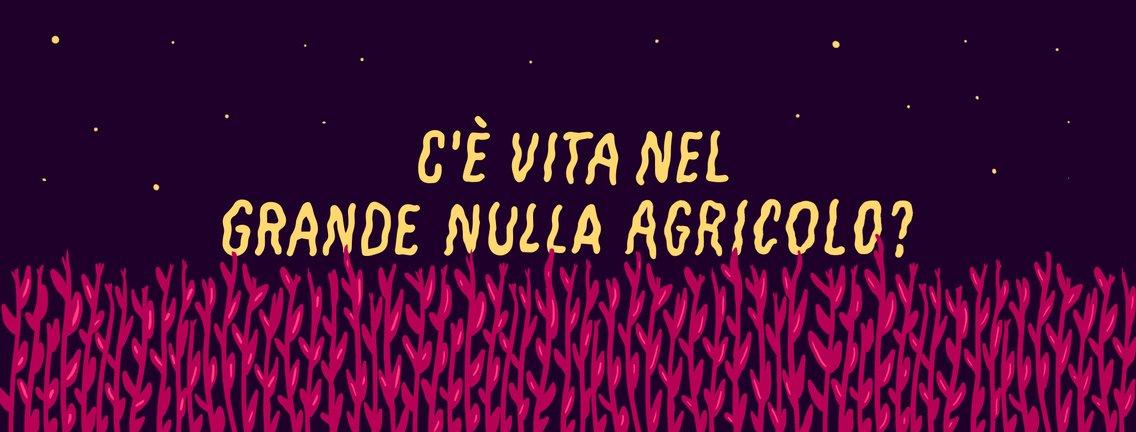 C'è vita nel Grande Nulla Agricolo? - immagine di copertina