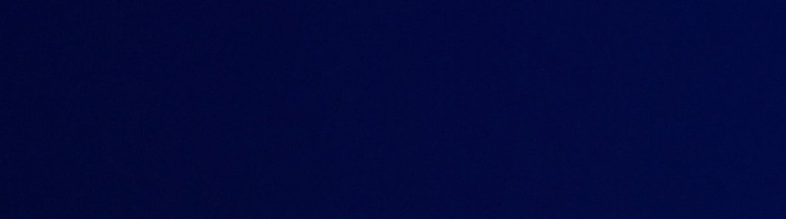 Puck & Jim Show - imagen de portada