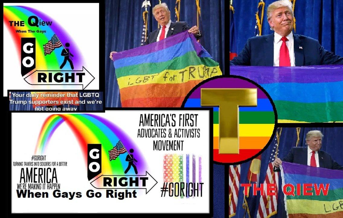 The Qiew When The Gays Go Right - immagine di copertina