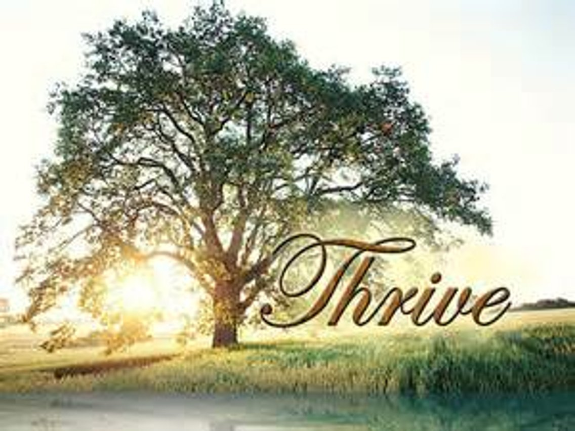 Thriving In Unlikely Circumstances#9 - Cover Image