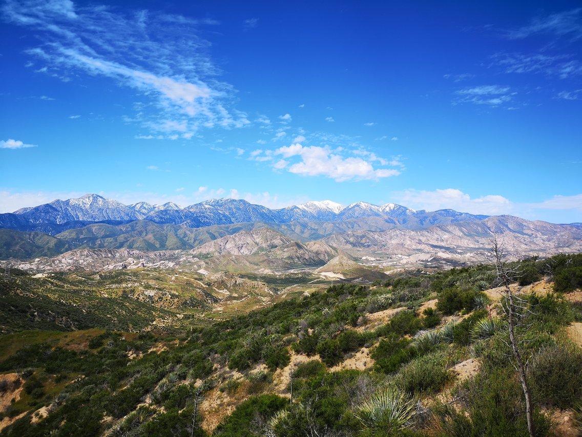Camino Steve az amerikai vadonban - Cover Image