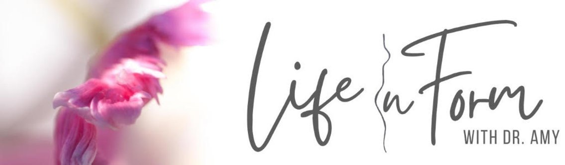 Life In Form with Dr. Amy Chadwick - Cover Image
